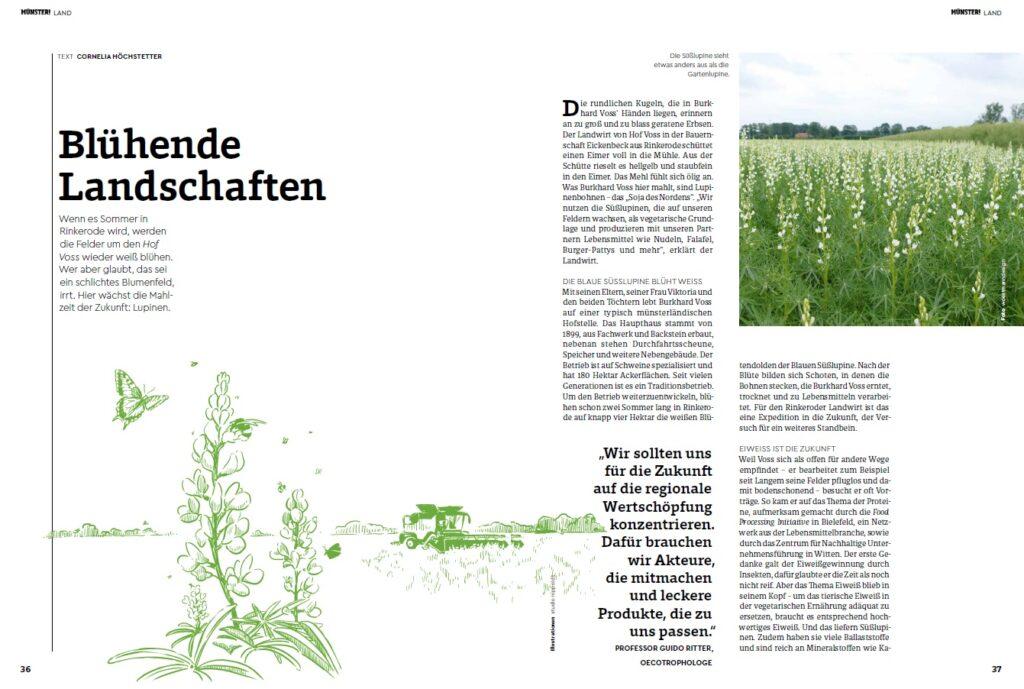 Blühende Landschaften Titelseite